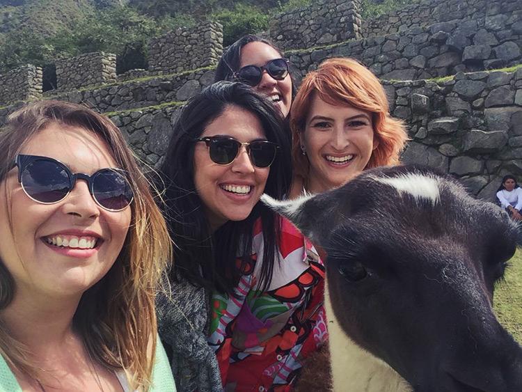 selfie-llama