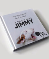 Jimmy Choo: o canino best-seller!