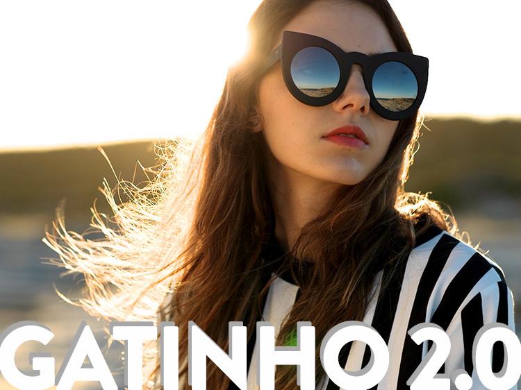 gatinho2