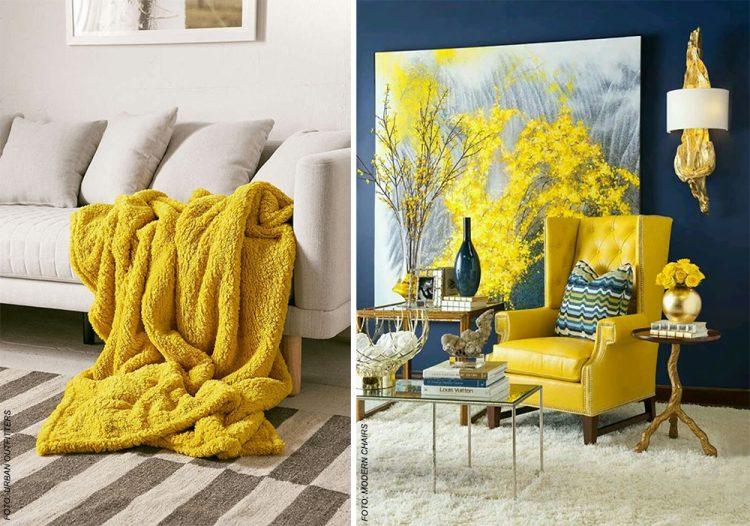 amarelo - yellow primrose 5