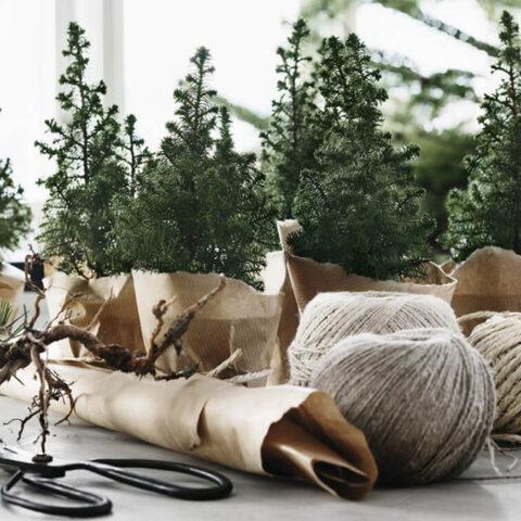 5 ideias de decorações fáceis e diferentes para o Natal