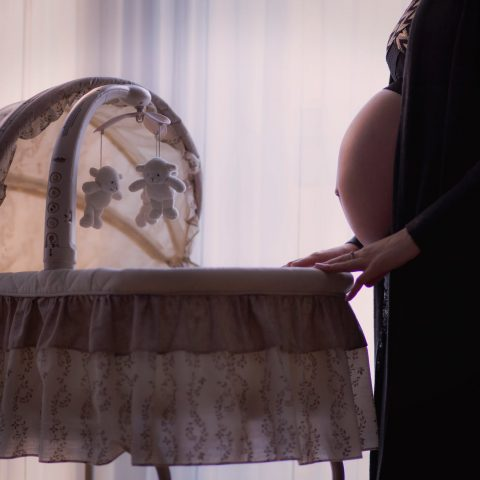Projeto Piloto: gravidez na pandemia