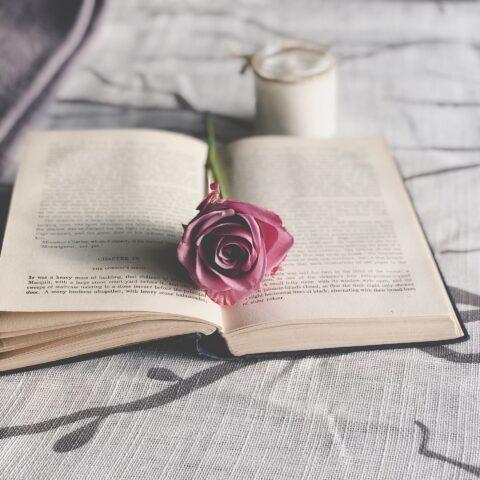 Equipe CDG responde: Os livros das nossas vidas